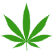 Hemp Marijunana icon