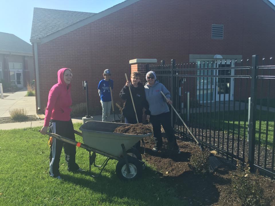 autumn volunteering QLI Cleanup